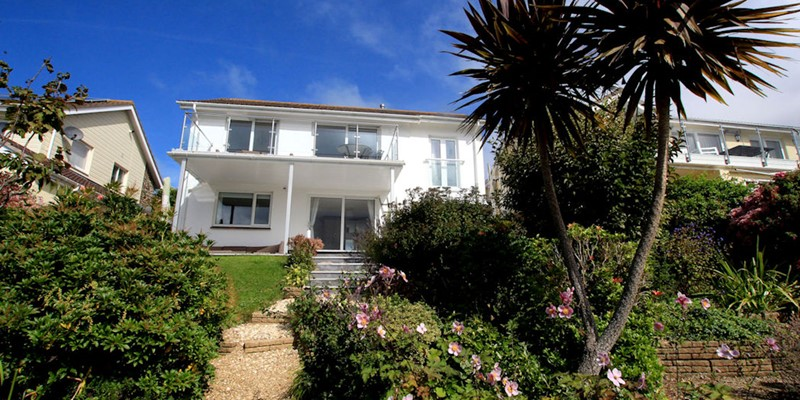 Atlantic House Woolacombe Holiday Cottages Palm Tree