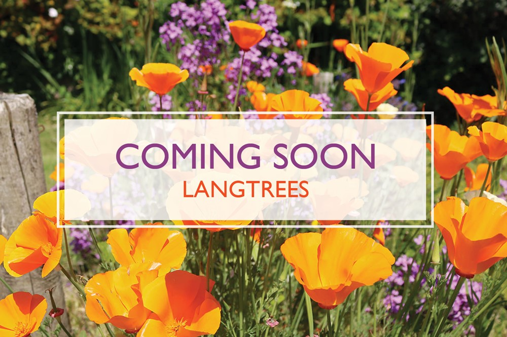 Coming Soon Langtrees Croyde Holiday Cottages