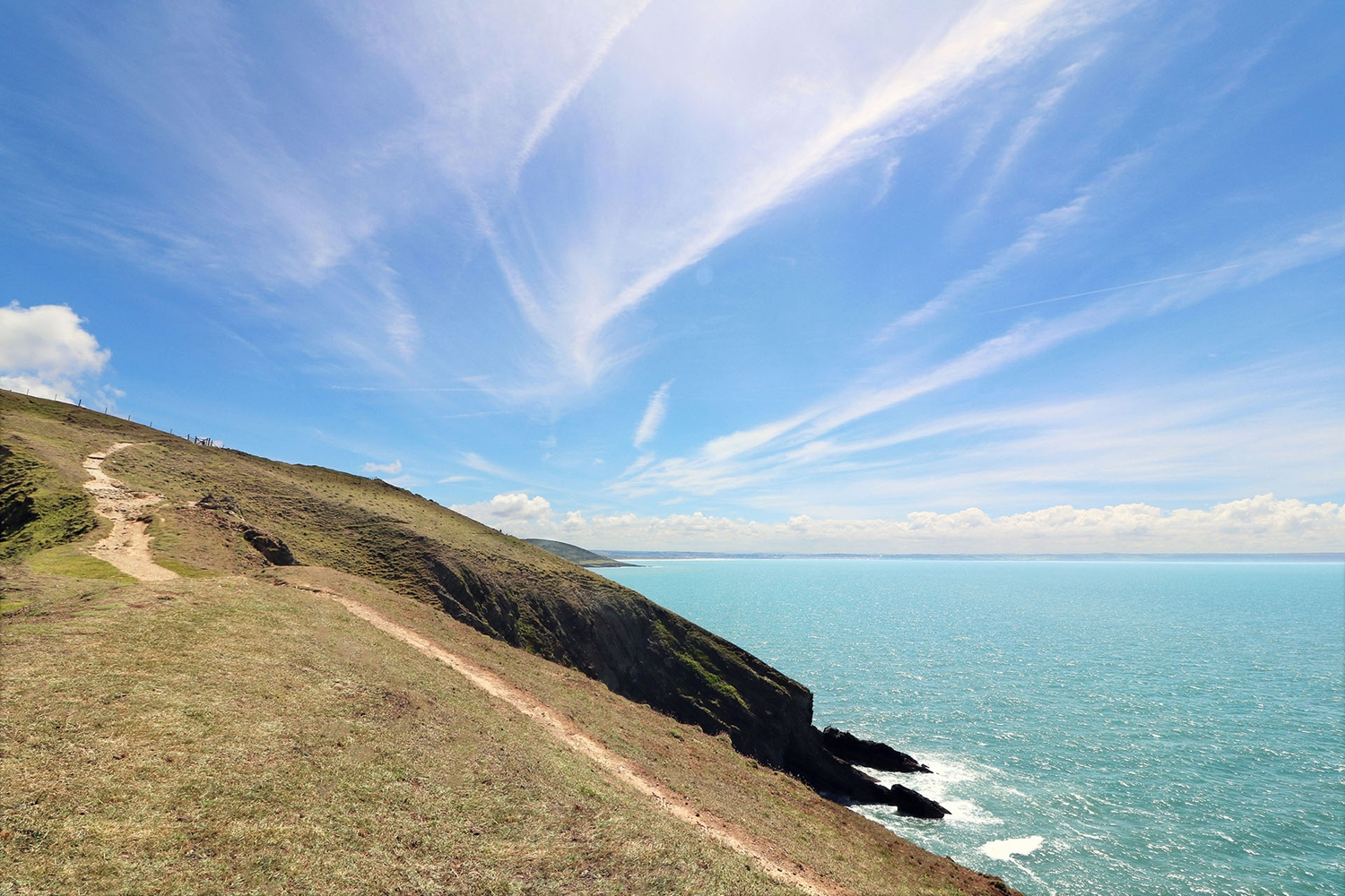 TOP 4 DOG FRIENDLY COASTAL WALKS IN NORTH DEVON