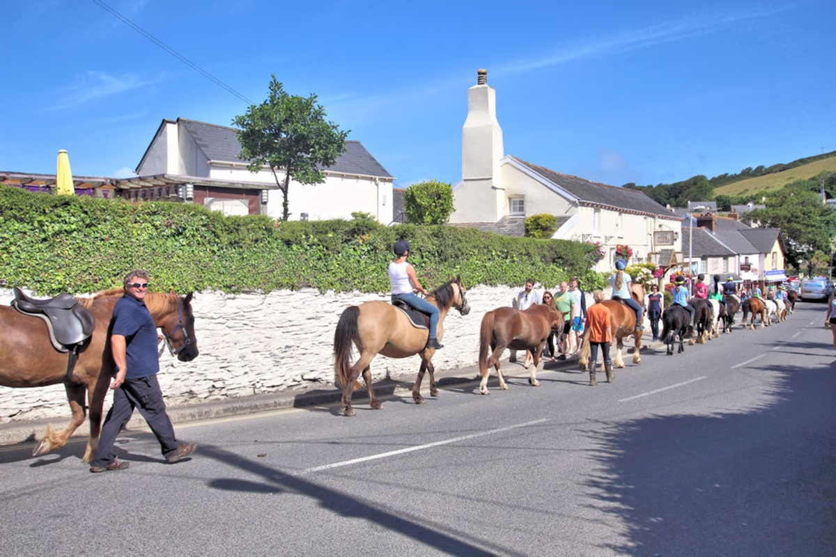 Croyde Holiday Cottages Horses In The Village